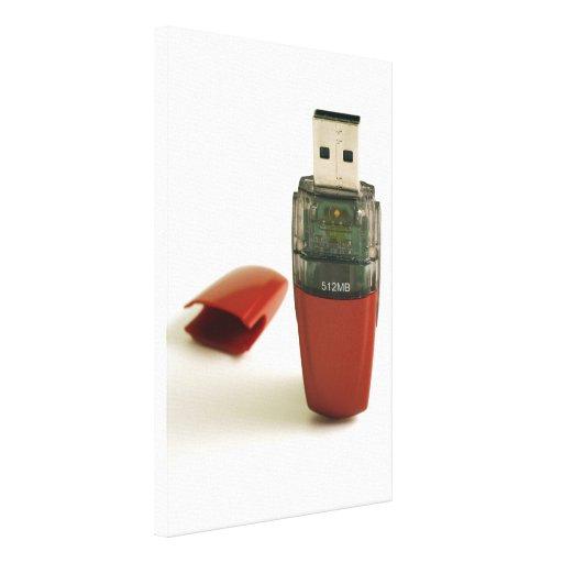 USB Flash pen Stretched Canvas Prints