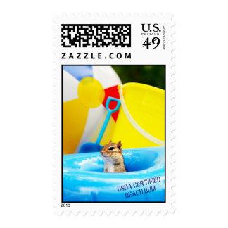 USDA Certified Beach Bum Chipmunk Postage