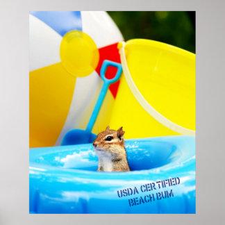 USDA Certified Beach Bum Chipmunk Poster
