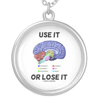 Use It Or Lose It (Anatomical Brain Humor) Round Pendant Necklace