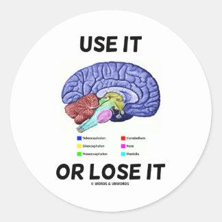 Use It Or Lose It (Brain Anatomy Humor Saying) Classic Round Sticker