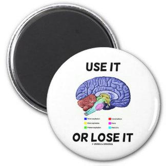 Use It Or Lose It Brain Anatomy Humor Saying Refrigerator Magnet