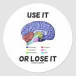 Use It Or Lose It (Brain Anatomy Humor Saying) Stickers