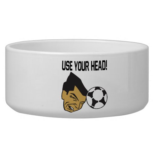 Use Your Head Dog Bowl