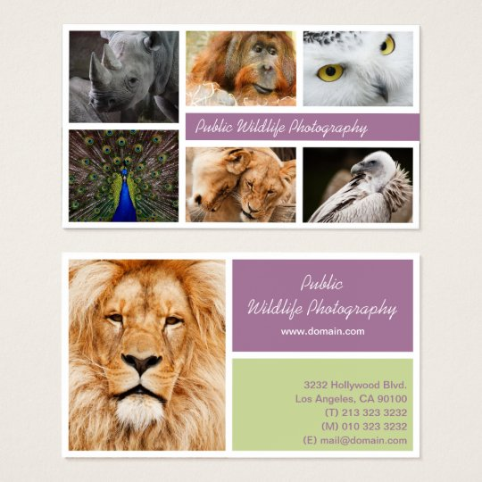 Use Your Own Photography Business Card