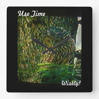 Use Your Time Wisely  Owl Wall Clock