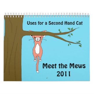 Uses for a Second Hand Cat (Meet the Mews) Calendar