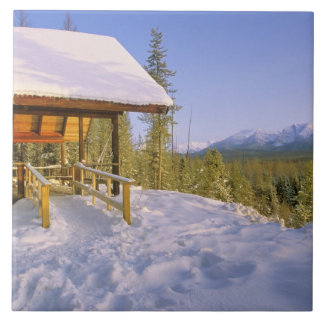 USFS Schnauss Cabin rental in Winter ovelooking Large Square Tile