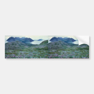 Ushagat Island in the Barren Islands Bumper Stickers
