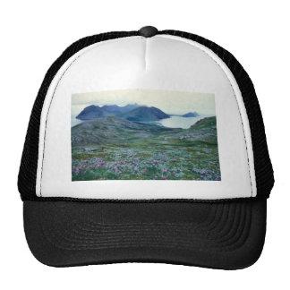 Ushagat Island in the Barren Islands Mesh Hats