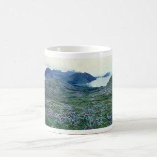 Ushagat Island in the Barren Islands Coffee Mugs