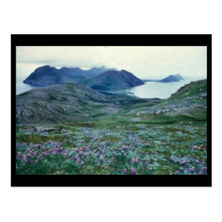 Ushagat Island in the Barren Islands Postcards