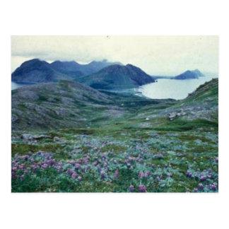 Ushagat Island in the Barren Islands Postcard
