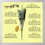 Ushpizin & Arba Minim (4 Species) Poster