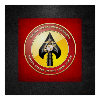 USMC Special Operations Command MARSOC 3D Poster