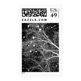 USPS Christmas Greeting Postage Stamp 2014
