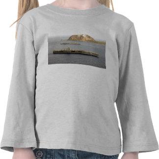 USS C Vinson CVN-70 Iwo Jima Camisetas