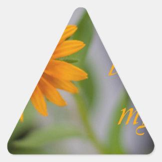 Usted aclara mi vida pegatina triangular