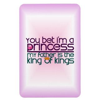 Usted apostó que soy princesa imán de vinilo