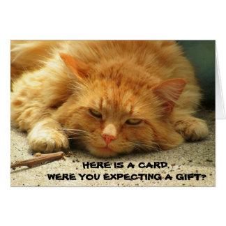 ¿Usted contaba con un regalo? Eso es lindo. Gatito Tarjeta De Felicitación