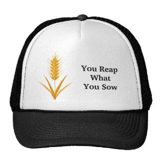Usted cosecha lo que usted siembra el gorra del tr