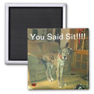 ¡Usted dijo Sit!!!!! Imán Cuadrado