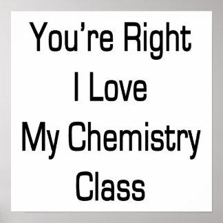 Usted es amor correcto de I mi clase de química Poster