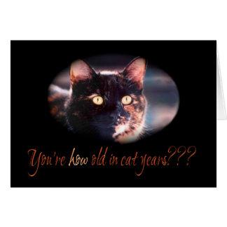 Usted es cómo tarjeta de cumpleaños vieja del gato