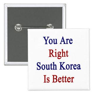 Usted es Corea del Sur derecha es mejor Pins