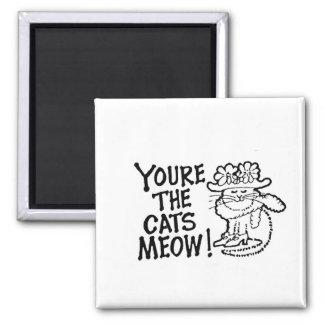 ¡Usted es el maullido de los gatos! Imán