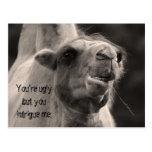Usted es feo tarjeta postal