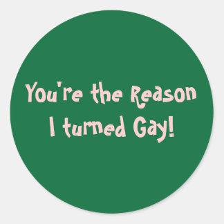 ¡Usted es la razón que di vuelta al gay! Etiquetas Redondas