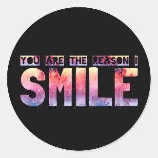 Usted es la razón que sonrío pegatinas redondas