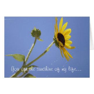 Usted es la sol de mi vida… felicitación