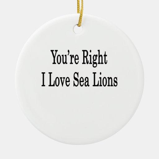 Usted es leones marinos derechos del amor de I Adorno Navideño Redondo De Cerámica