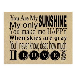 Usted es mi ropa y regalos de la sol postal