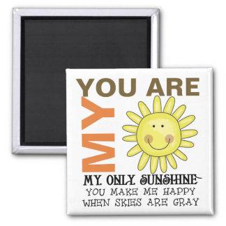 Usted es mi sol imán de nevera