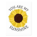 Usted es mi sol postal