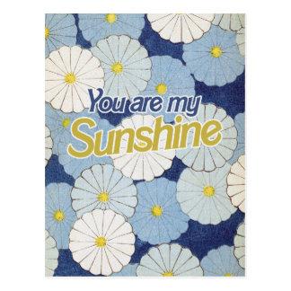 Usted es mi sol tarjeta postal