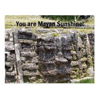 ¡Usted es sol maya! Postal