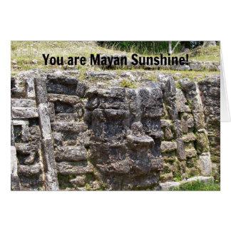 ¡Usted es sol maya! Tarjeta De Felicitación