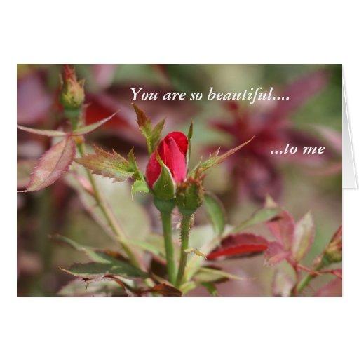 Usted es tan hermoso a mí tarjeta de felicitación