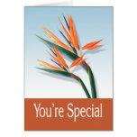 Usted es tarjeta de felicitación especial