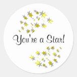 ¡Usted es una estrella! Etiquetas Redondas
