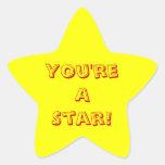 Usted es una estrella calcomanías forma de estrella