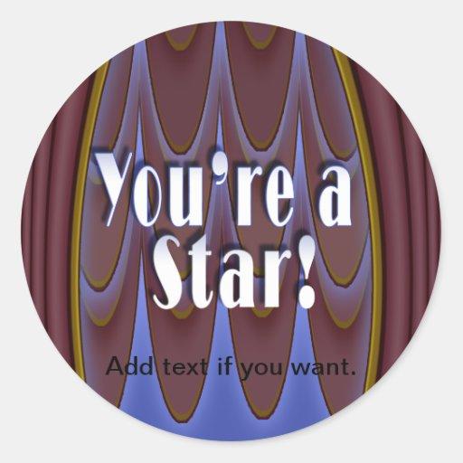 ¡Usted es una estrella! Pegatinas Redondas