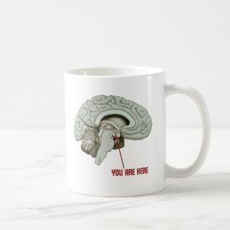 Usted está aquí taza de café