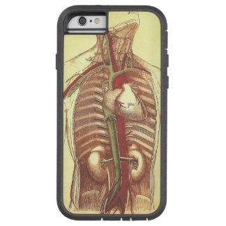 USTED está en mi anatomía del vintage del corazón Funda De iPhone 6 Tough Xtreme
