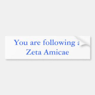 Usted está siguiendo una zeta Amicae Pegatina Para Auto