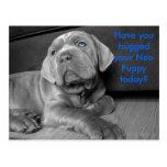 ¿Usted ha abrazado su perrito neo hoy? Tarjetas Postales